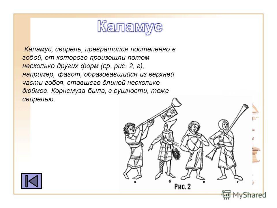 Каламус, свирель, превратился постепенно в гобой, от которого произошли потом несколько других форм (ср. рис. 2, г), например, фагот, образова вшийся из верхней части гобоя, ста вшего длиной несколько дюймов. Корнемуза была, в сущности, тоже свирелью