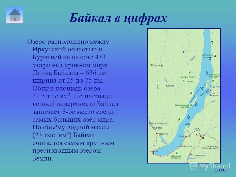 Содержание презентации 1. Байкал в цифрах 2. Происхождение названия озера 3. Флора и фауна озера 4. Проблемы Байкала 5. Факты о Байкале назад