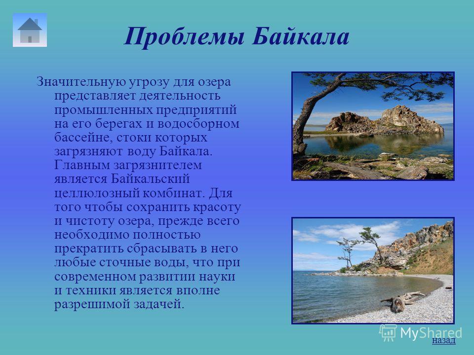 Флора и фауна озера В Байкале водится более 2600 видов и разновидностей животных и более 1000 видов растительных организмов. В озере насчитывается 58 видов рыб. Наиболее известные - омуль, сиг, хариус, таймень, осетр, голомянка, ленок. На побережье Б