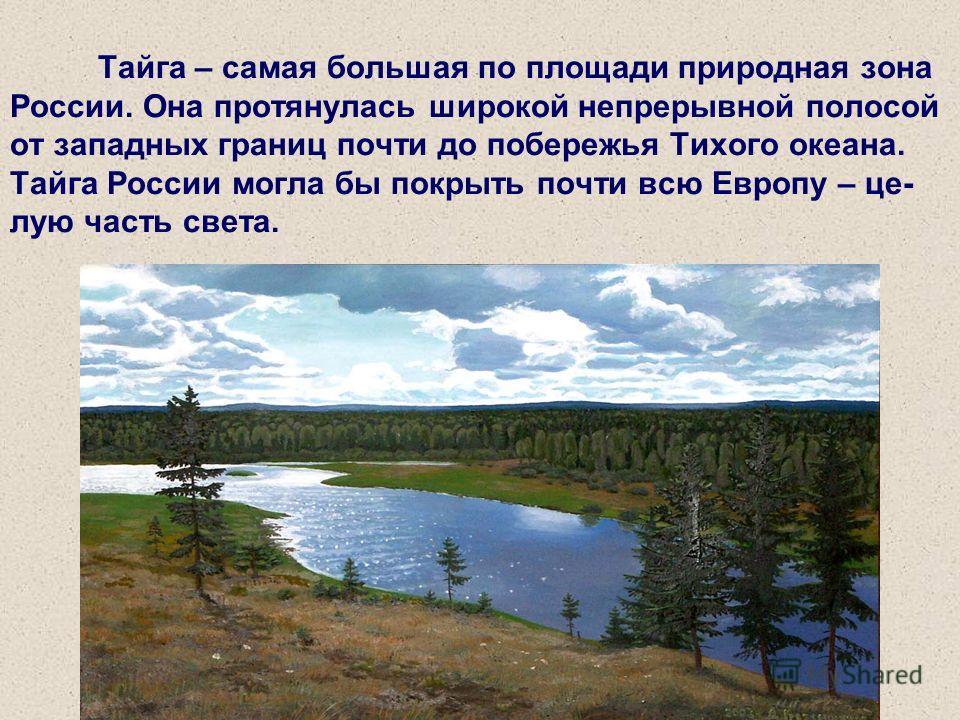 Тайга – самая большая по площади природная зона России. Она протянулась широкой непрерывной полосой от западных границ почти до побережья Тихого океана. Тайга России могла бы покрыть почти всю Европу – целую часть света.