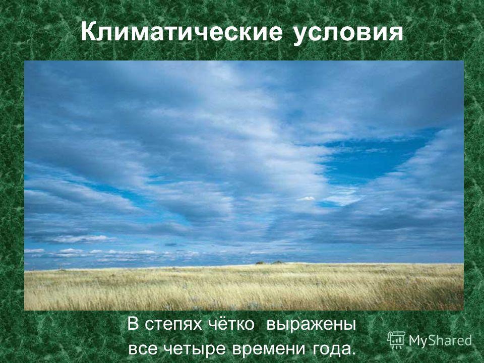 Климатические условия В степях чётко выражены все четыре времени года.