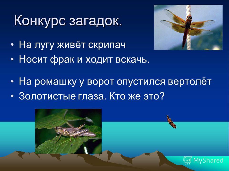 Физкультминутка. Рыбки весело резвятся В чистой тёпленькой воде, То сойдутся, разойдутся, То зароются в песке.