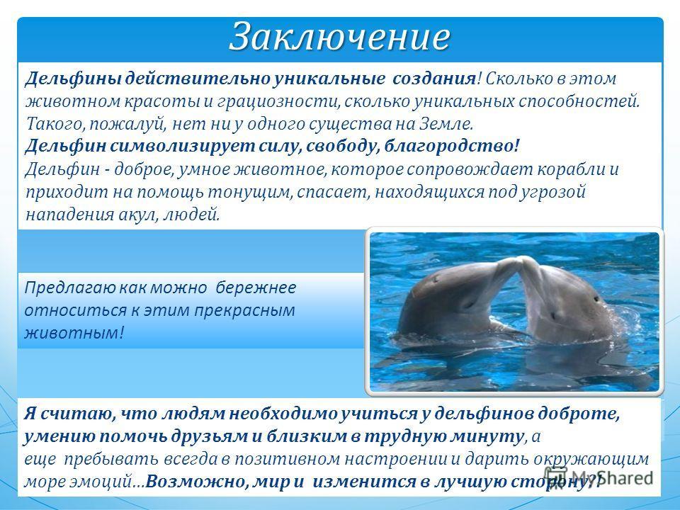Заключение Дельфины действительно уникальные создания! Сколько в этом животном красоты и грациозности, сколько уникальных способностей. Такого, пожалуй, нет ни у одного существа на Земле. Дельфин символизирует силу, свободу, благородство! Дельфин - д