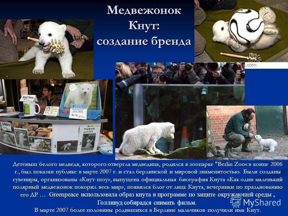 Медвежонок Кнут: создание бренда Детеныш белого медведя, которого отвергла медведица, родился в зоопарке