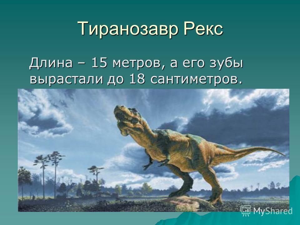 Тиранозавр Рекс Длина – 15 метров, а его зубы вырастали до 18 сантиметров.
