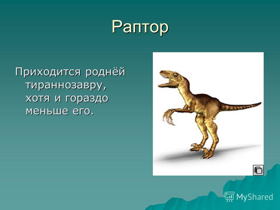 Раптор Приходится роднёй тираннозавру, хотя и гораздо меньше его.