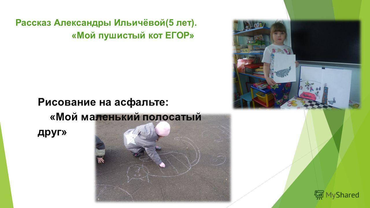 Рассказ Александры Ильичёвой(5 лет). «Мой пушистый кот ЕГОР» Рисование на асфальте: «Мой маленький полосатый друг»