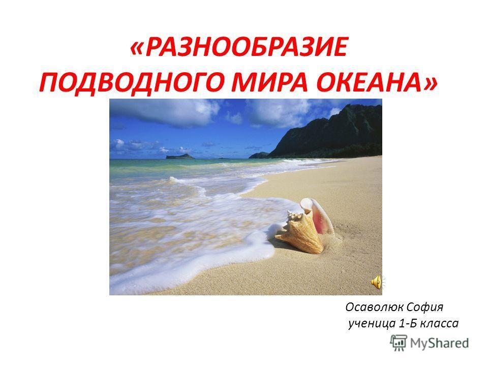 Осаволюк София ученица 1-Б класса «РАЗНООБРАЗИЕ ПОДВОДНОГО МИРА ОКЕАНА»
