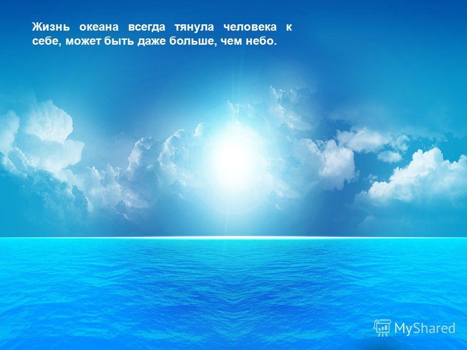 Жизнь океана всегда тянула человека к себе, может быть даже больше, чем небо.