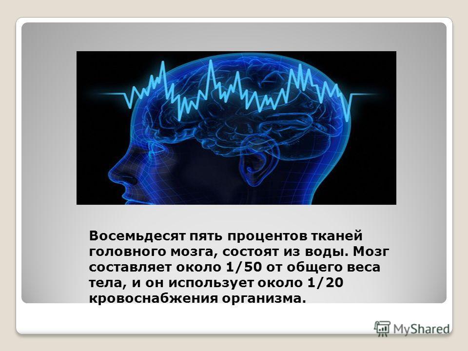 Восемьдесят пять процентов тканей головного мозга, состоят из воды. Мозг составляет около 1/50 от общего веса тела, и он использует около 1/20 кровоснабжения организма.