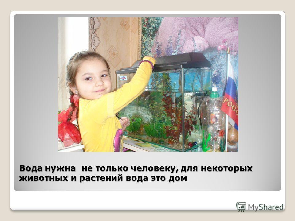 Вода нужна не только человеку, для некоторых животных и растений вода это дом