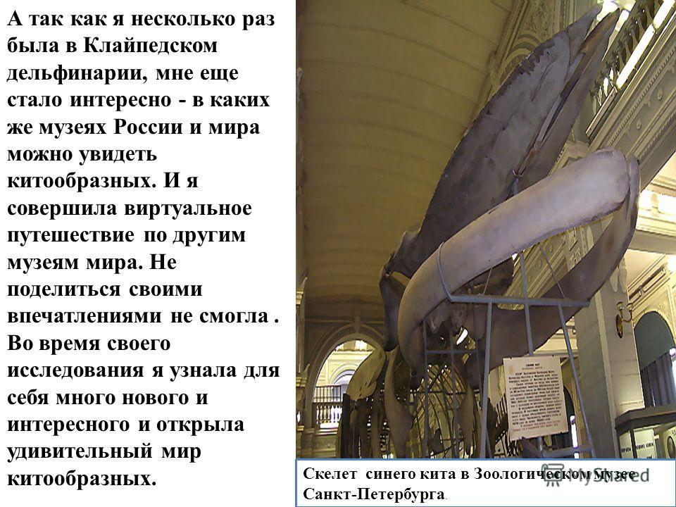 А так как я несколько раз была в Клайпедском дельфинарии, мне еще стало интересно - в каких же музеях России и мира можно увидеть китообразных. И я совершила виртуальное путешествие по другим музеям мира. Не поделиться своими впечатлениями не смогла.
