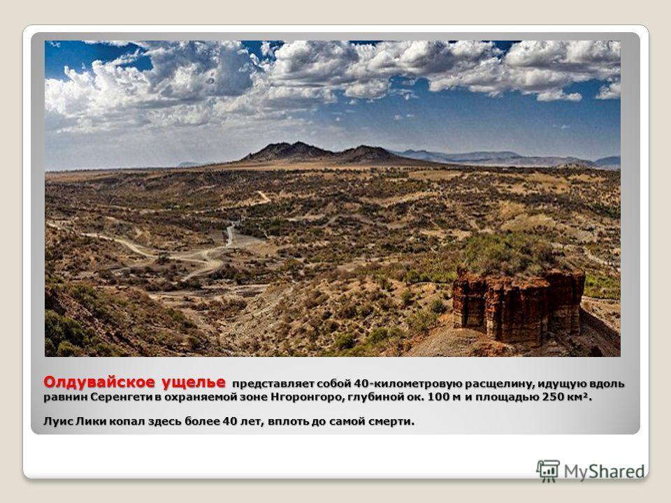 Олдувайское ущелье представляет собой 40-километровую расщелину, идущую вдоль равнин Серенгети в охраняемой зоне Нгоронгоро, глубиной ок. 100 м и площадью 250 км². Луис Лики копал здесь более 40 лет, вплоть до самой смерти.