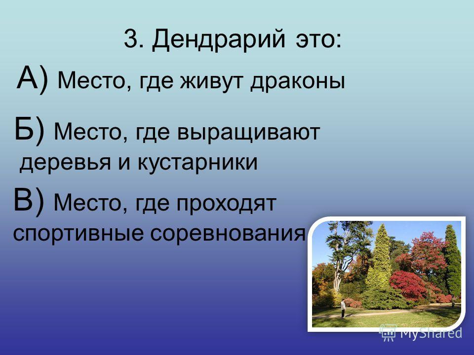 2. Название какого растения произошло от персидского слова «тюрбан»? А) Клевер Б) Тюльпан В) Ромашка