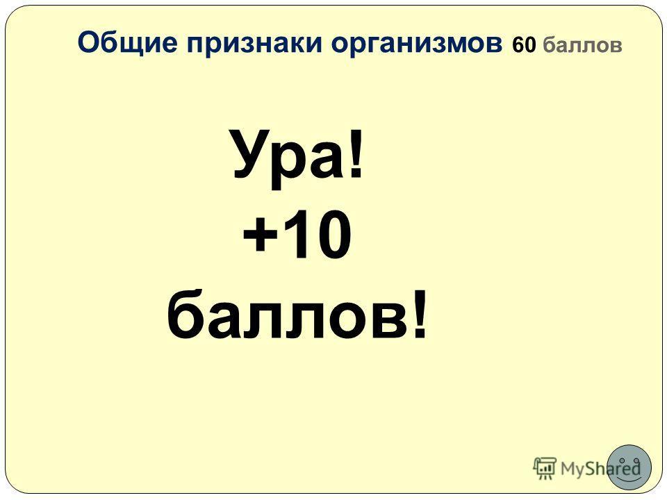 Общие признаки организмов 60 баллов Ура! +10 баллов!