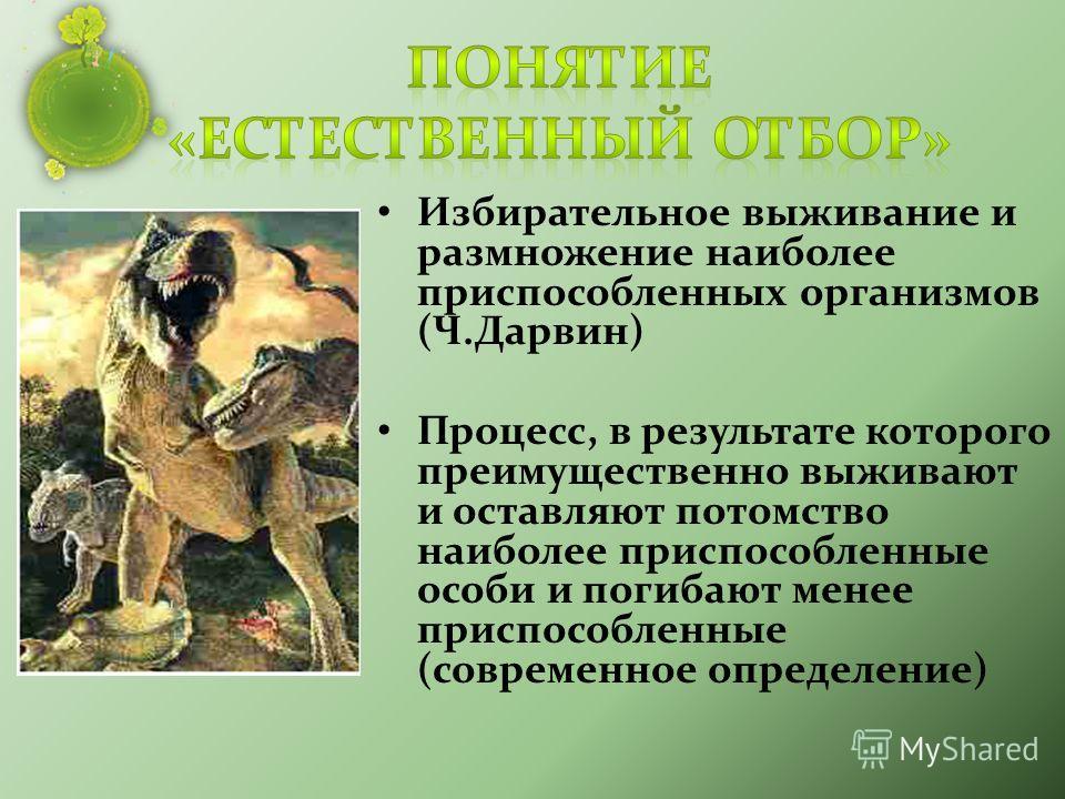 Избирательное выживание и размножение наиболее приспособленных организмов (Ч.Дарвин) Процесс, в результате которого преимущественно выживают и оставляют потомство наиболее приспособленные особи и погибают менее приспособленные (современное определени