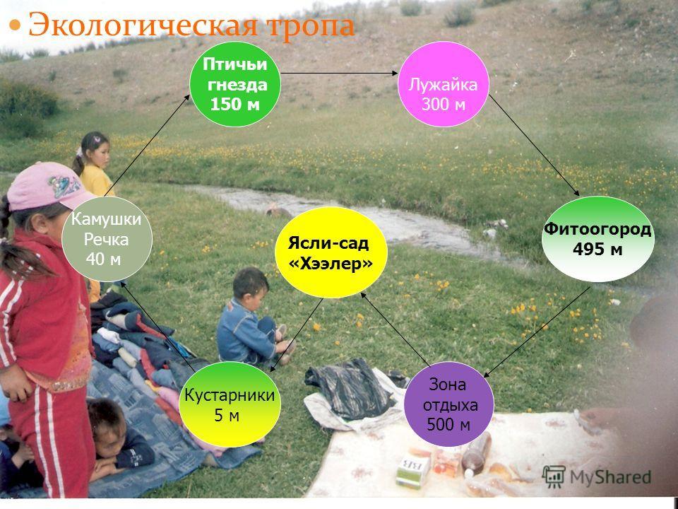 Экологическая тропа Ясли-сад «Хээлер» Камужки Речка 40 м Кустарники 5 м Зона отдыха 500 м Фитоогород 495 м Птичьи гнезда 150 м Лужайка 300 м