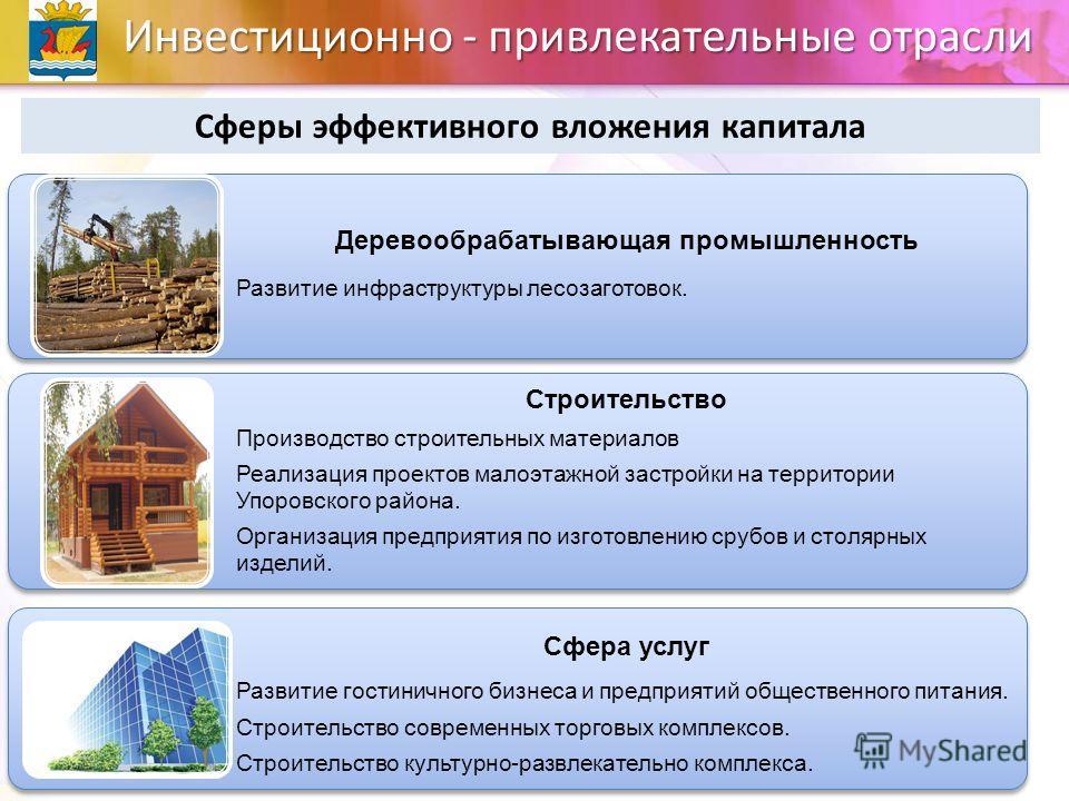 Инвестиционно - привлекательные отрасли Сферы эффективного вложения капитала Деревообрабатывающая промышленность Развитие инфраструктуры лесозаготовок. Строительство Производство строительных материалов Реализация проектов малоэтажной застройки на те