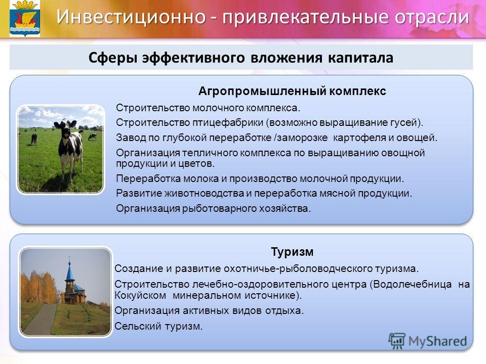 Инвестиционно - привлекательные отрасли Сферы эффективного вложения капитала Агропромышленный комплекс Строительство молочного комплекса. Строительство птицефабрики (возможно выращивание гусей). Завод по глубокой переработке /заморозке картофеля и ов