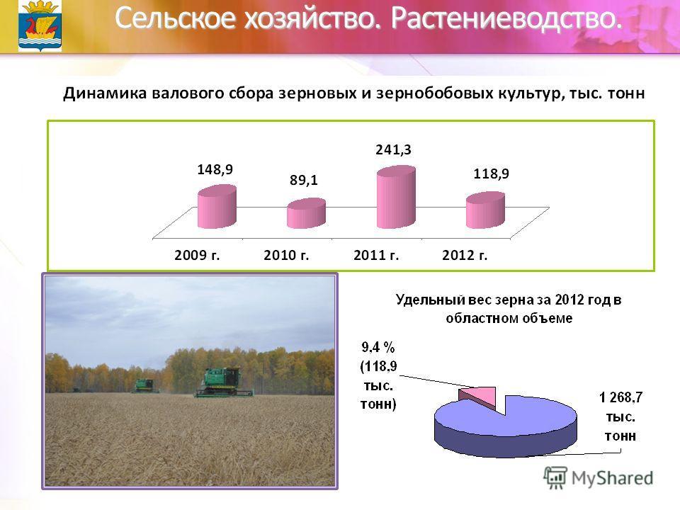 Сельское хозяйство. Растениеводство.