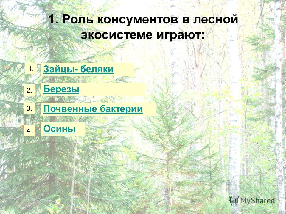 1. Роль консументов в лесной экосистеме играют: Зайцы- беляки Березы Почвенные бактерии Осины 1. 2. 3. 4.