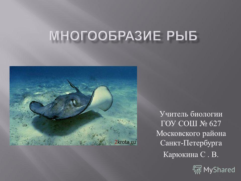 Учитель биологии ГОУ СОШ 627 Московского района Санкт - Петербурга Карюкина С. В.