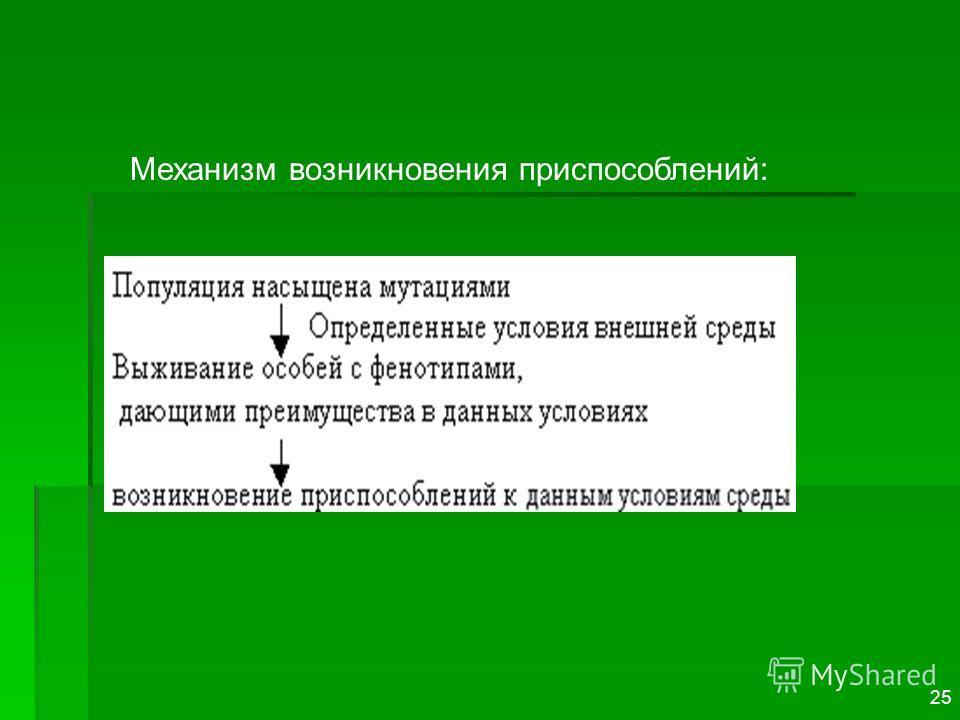 Механизм возникновения приспособлений: 25