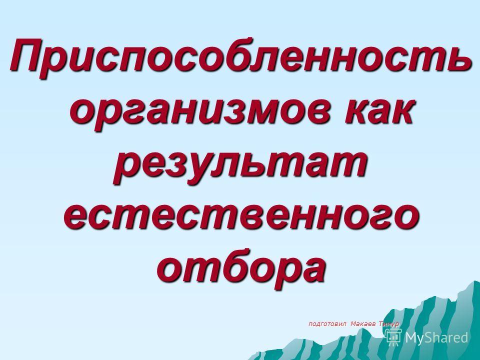 Приспособленность организмов как результат естественного отбора подготовил Макаев Тимур подготовил Макаев Тимур
