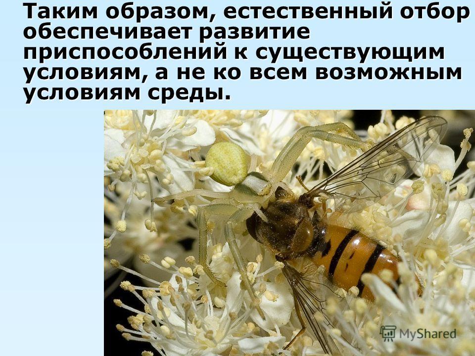 Таким образом, естественный отбор обеспечивает развитие приспособлений к существующим условиям, а не ко всем возможным условиям среды.
