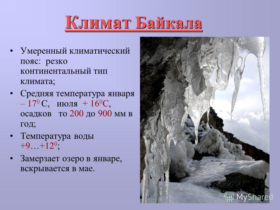 Климат Байкала Умеренный климатический пояс: резко континентальный тип климата; Средняя температура января – 17 0 С, июля + 16 0 С, осадков то 200 до 900 мм в год; Температура воды +9…+12 0 ; Замерзает озеро в январе, вскрывается в мае.