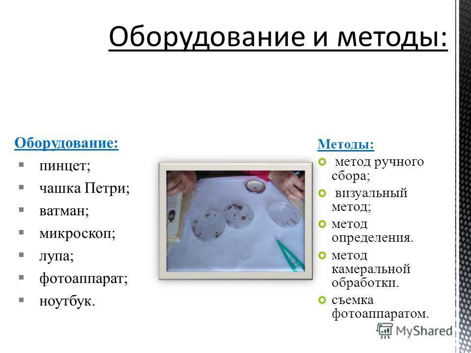 Оборудование: пинцет; чашка Петри; ватман; микроскоп; лупа; фотоаппарат; ноутбук. Методы: метод ручного сбора; визуальный метод; метод определения. метод камеральной обработки. съемка фотоаппаратом.