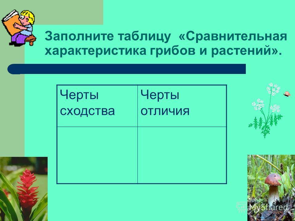 Назовите части гриба обозначенные на рисунке под цифрами 1-3. 1 2 3