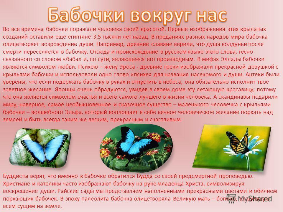 Во все времена бабочки поражали человека своей красотой. Первые изображения этих крылатых созданий оставили еще египтяне 3,5 тысячи лет назад. В преданиях разных народов мира бабочка олицетворяет возрождение души. Например, древние славяне верили, чт