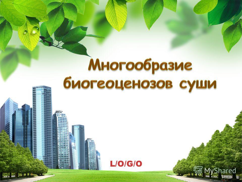 L/O/G/O