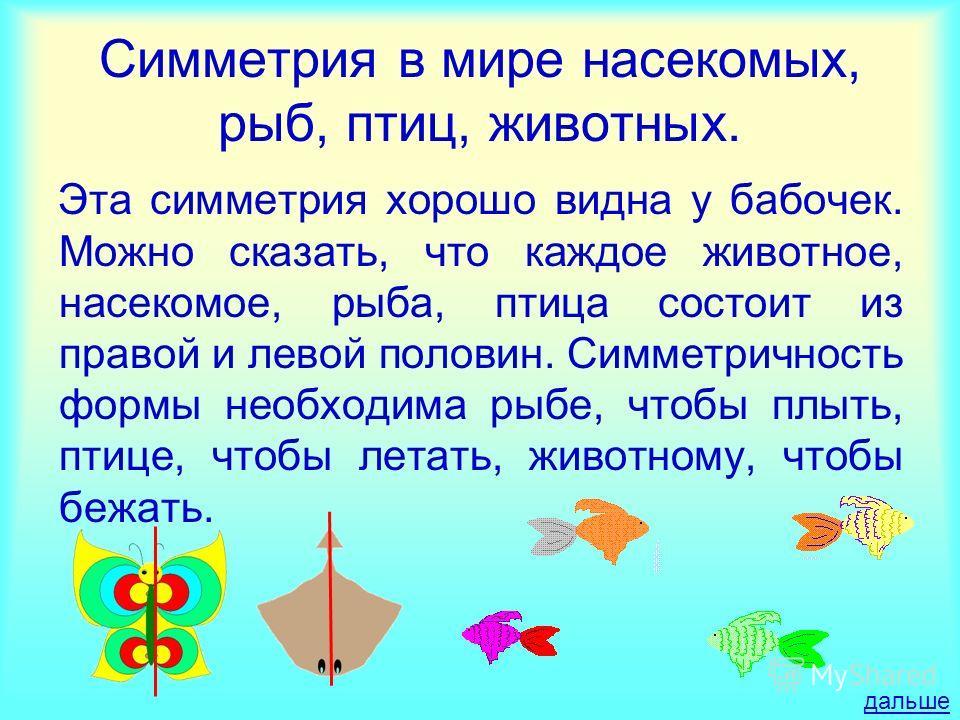 Симметрия в мире насекомых, рыб, птиц, животных. Эта симметрия хорошо видна у бабочек. Можно сказать, что каждое животное, насекомое, рыба, птица состоит из правой и левой половин. Симметричность формы необходима рыбе, чтобы плыть, птице, чтобы летат