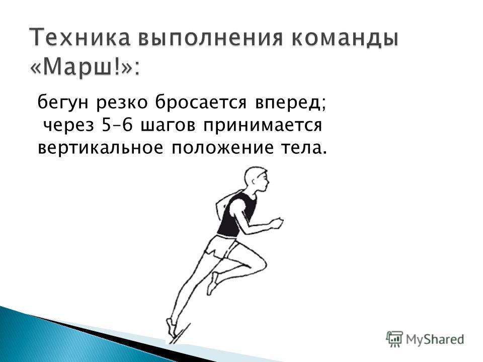 бегун резко бросается вперед; через 5–6 шагов принимается вертикальное положение тела.