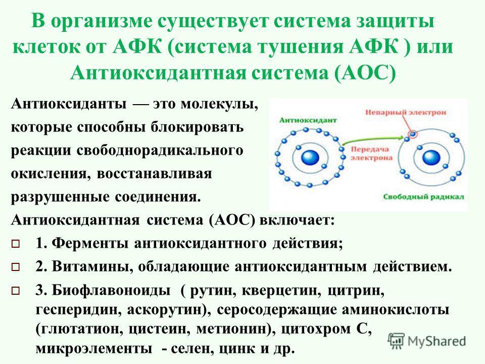 В организме существует система защиты клеток от АФК (система тушения АФК ) или Антиоксидантная система (АОС) Антиоксиданты это молекулы, которые способны блокировать реакции свободнорадикального окисления, восстанавливая разрушенные соединения. Антио