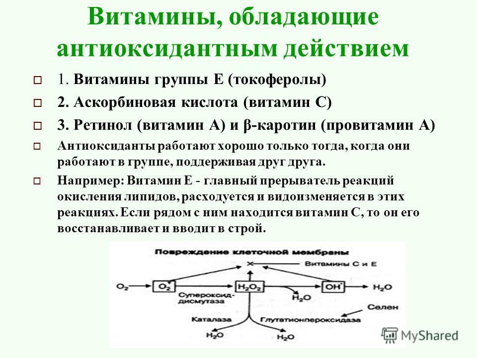 Витамины, обладающие антиоксидантным действием 1. Витамины группы Е (токоферолы) 2. Аскорбиновая кислота (витамин С) 3. Ретинол (витамин А) и β-каротин (провитамин А) Антиоксиданты работают хорошо только тогда, когда они работают в группе, поддержива