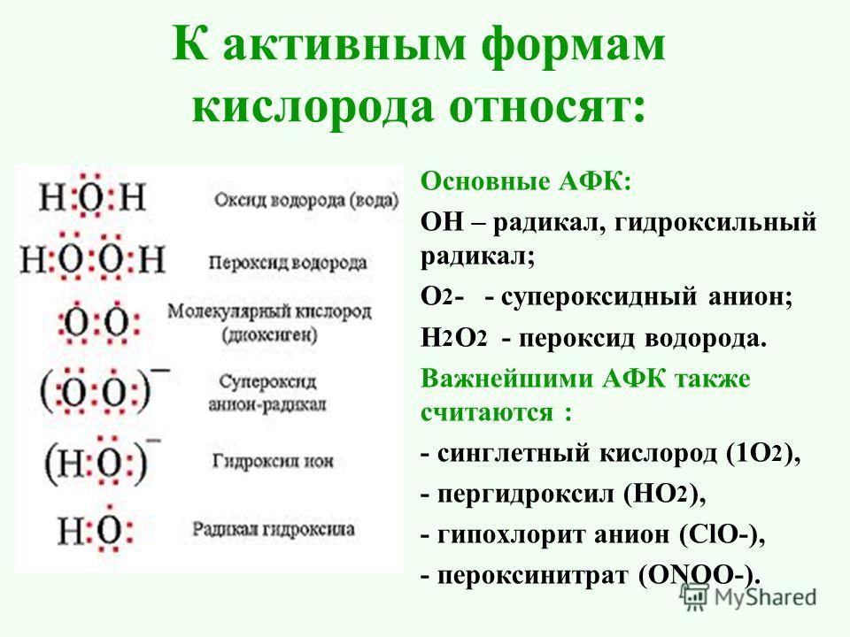 К активным формам кислорода относят: Основные АФК: ОН – радикал, гидроксильный радикал; О 2 - - супероксидный анион; Н 2 О 2 - пероксид водорода. Важнейшими АФК также считаются : - синглетный кислород (1О 2 ), - пер гидроксил (НО 2 ), - гипохлорит ан