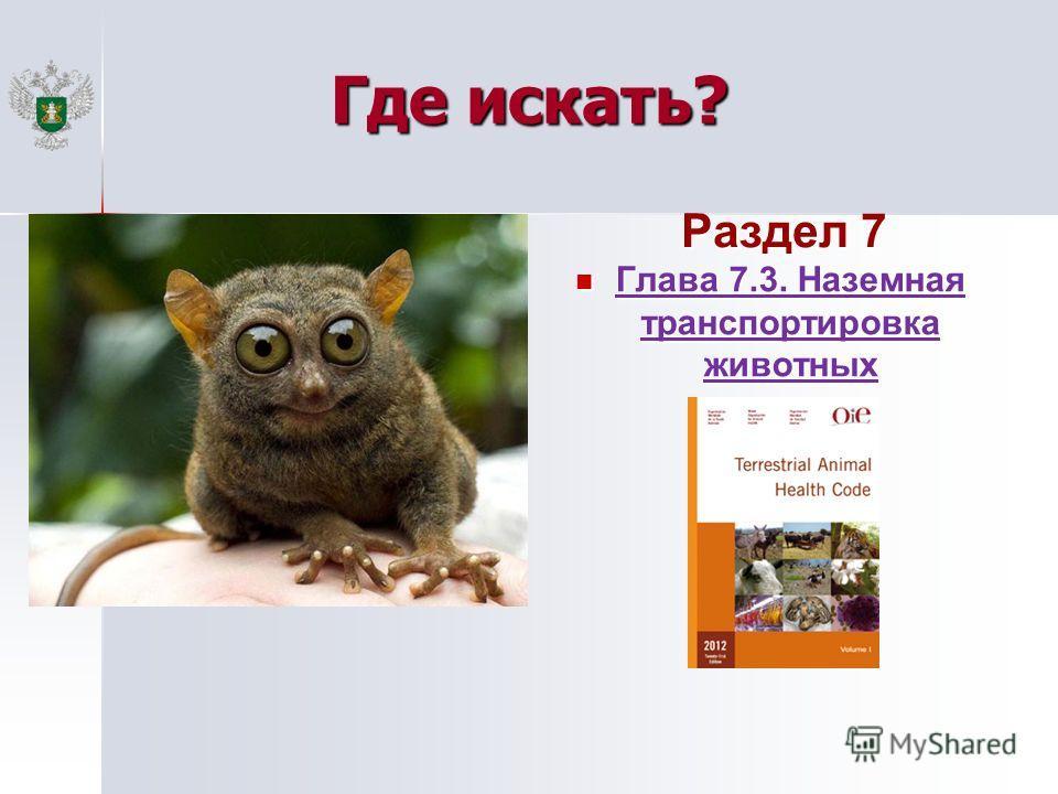 Где искать? Раздел 7 Глава 7.3. Наземная транспортировка животных Глава 7.3. Наземная транспортировка животных
