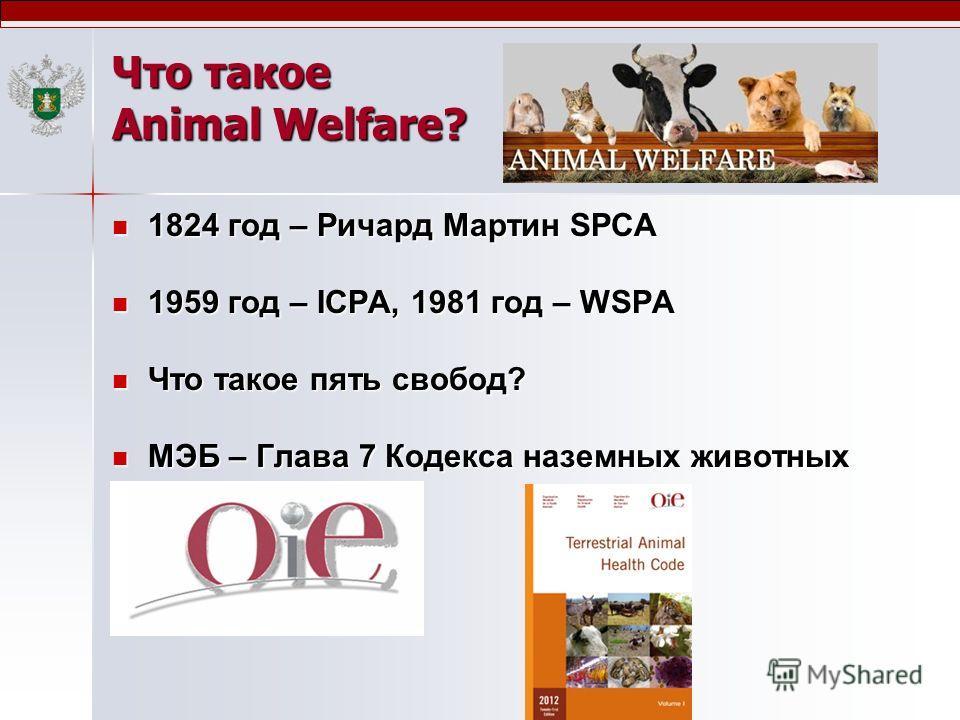 Что такое Animal Welfare? 1824 год – Ричард Мартин SPCA 1824 год – Ричард Мартин SPCA 1959 год – ICPA, 1981 год – WSPA 1959 год – ICPA, 1981 год – WSPA Что такое пять свобод? Что такое пять свобод? МЭБ – Глава 7 Кодекса наземных животных МЭБ – Глава