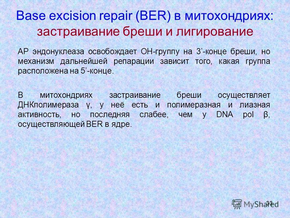 33 Base excision repair (BER) в митохондриях: застраивание бреши и лигирование АР эндонуклеаза освобождает OH-группу на 3-конце бреши, но механизм дальнейшей репарации зависит того, какая группа расположена на 5-конце. В митохондриях застраивание бре