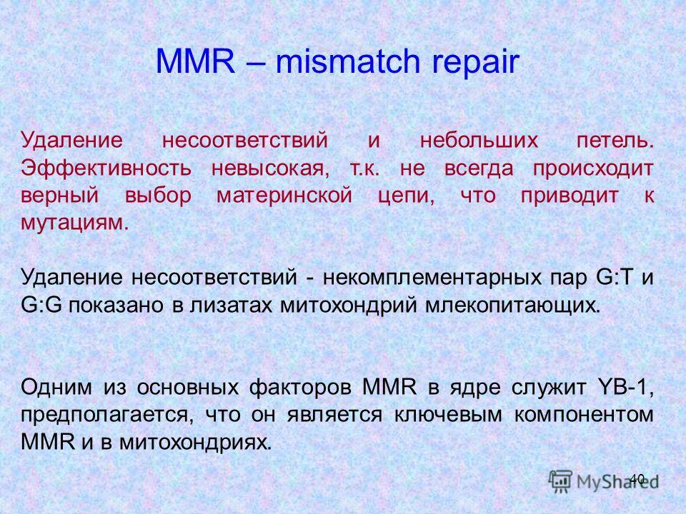 40 MMR – mismatch repair Удаление несоответствий и небольших петель. Эффективность невысокая, т.к. не всегда происходит верный выбор материнской цепи, что приводит к мутациям. Удаление несоответствий - некомплементарных пар G:T и G:G показано в лизат