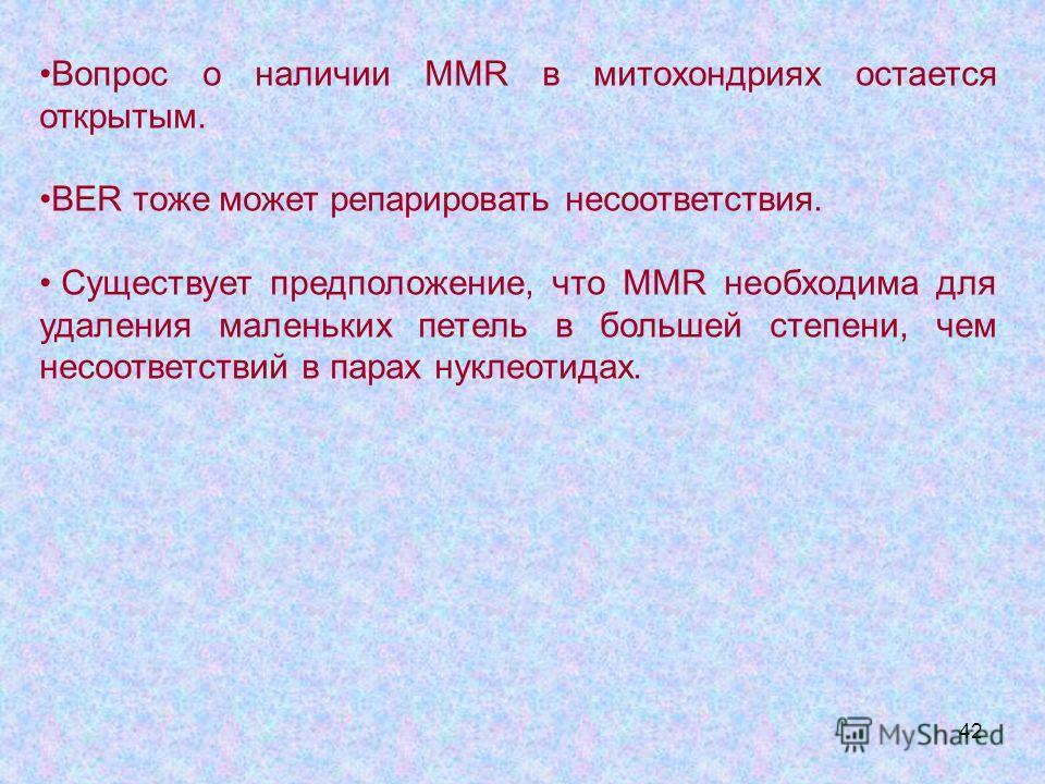 42 Вопрос о наличии MMR в митохондриях остается открытым. BER тоже может репарировать несоответствия. Существует предположение, что MMR необходима для удаления маленьких петель в большей степени, чем несоответствий в парах нуклеотидах.