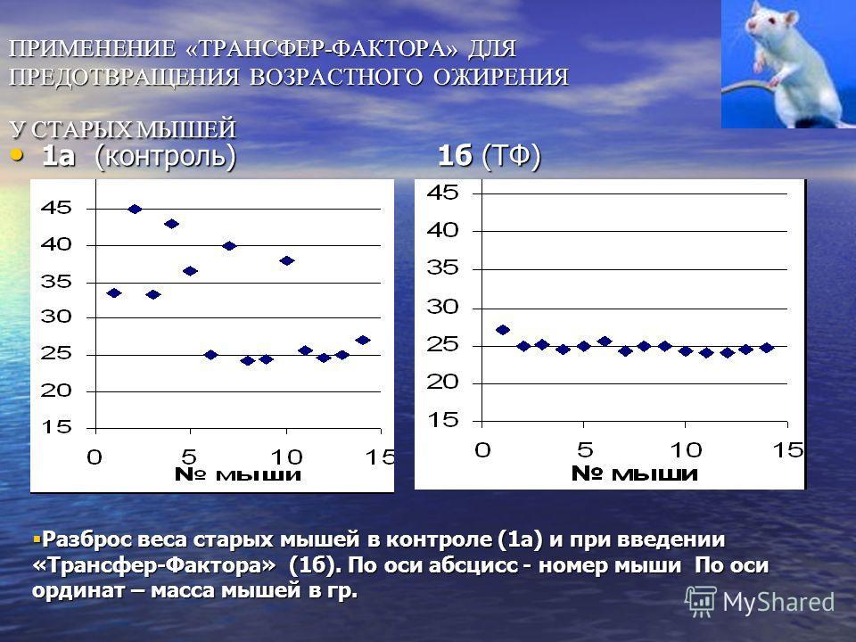 ТФ восстанавливал потенциал ТФ восстанавливал потенциал клеточного роста слюнных желез клеточного роста слюнных желез у старых мышей – на изопротеренол наблюдалось увеличение массы наблюдалось увеличение массы слюнных желез в 1,5-1,7 раза! Ттрансфер