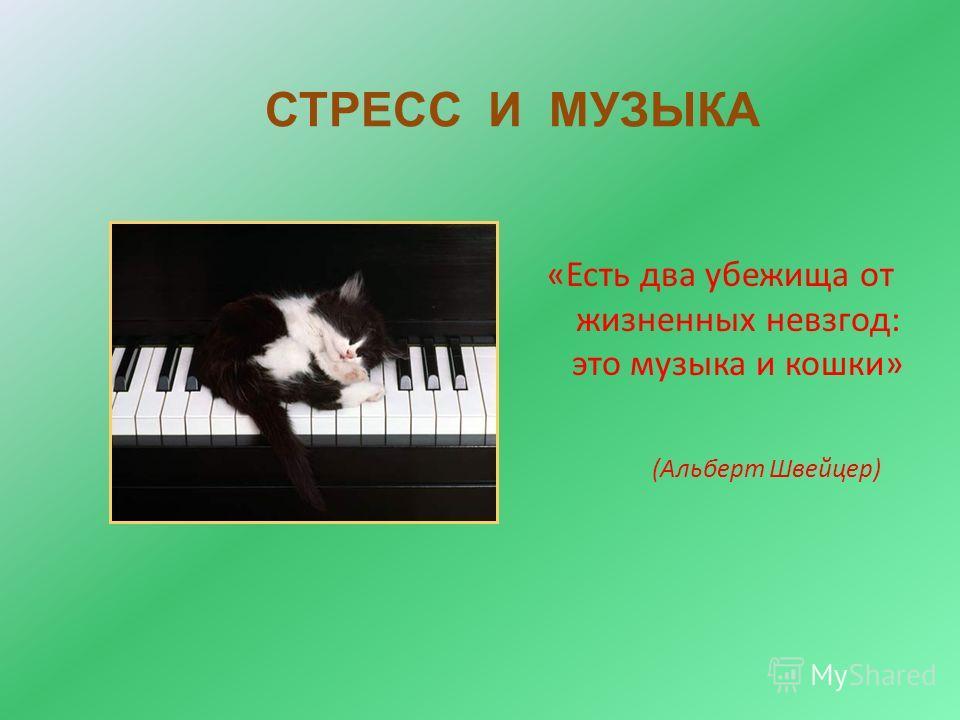 СТРЕСС И МУЗЫКА «Есть два убежища от жизненных невзгод: это музыка и кошки» (Альберт Швейцер)