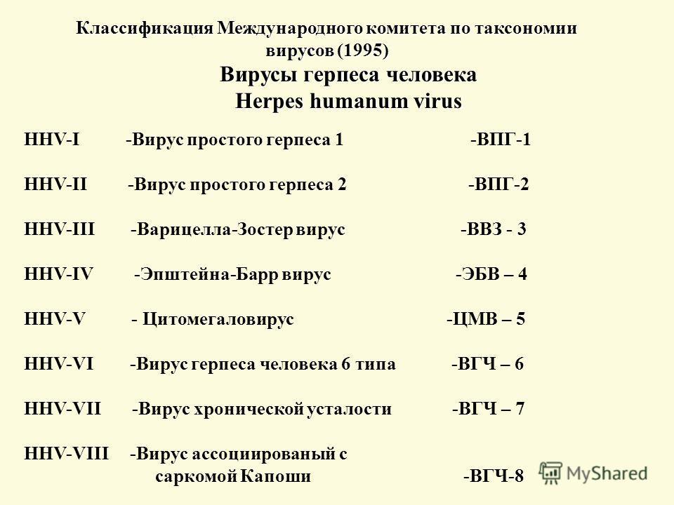 Классификация Международного комитета по таксономии вирусов (1995) Вирусы герпеса человека Herpes humanum virus HHV-I -Вирус простого герпеса 1 -ВПГ-1 HHV-II -Вирус простого герпеса 2 -ВПГ-2 HHV-III -Варицелла-Зостер вирус -ВВЗ - 3 HHV-IV -Эпштейна-Б