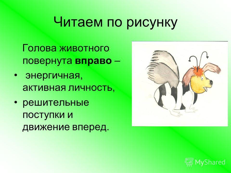Читаем по рисунку Голова животного повернута вправо – энергичная, активная личность, решительные поступки и движение вперед.