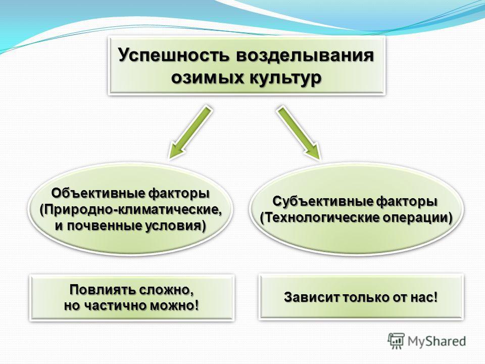 Объективные факторы (Природно-климатические, (Природно-климатические, и почвенные условия) Объективные факторы (Природно-климатические, (Природно-климатические, и почвенные условия) Субъективные факторы (Технологические операции) Субъективные факторы