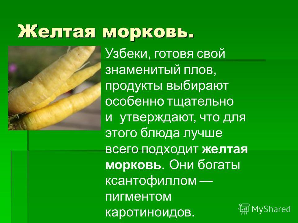Желтая морковь. Узбеки, готовя свой знаменитый плов, продукты выбирают особенно тщательно и утверждают, что для этого блюда лучше всего подходит желтая морковь. Они богаты ксантофиллом пигментом каротиноидов.